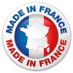 Badge du piege a frelon francais