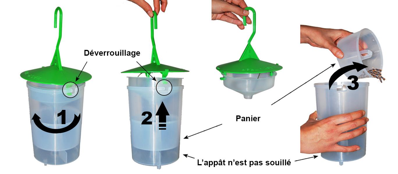 Utilisation du piege a frelon